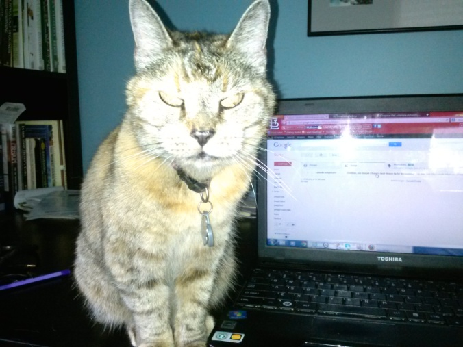 She's cute, but not a very good typist.